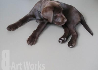 Mono Art gietvloer | PU | geschikt voor huisdieren